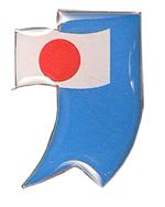 flag-pin11