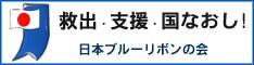 ブルーリボン運動:日本ブルーリボンの会